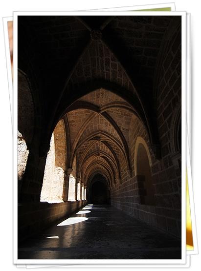 Visitar Monasterio de Piedra
