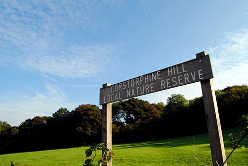 Corstorphine Hill - Viajar a Edimburgo