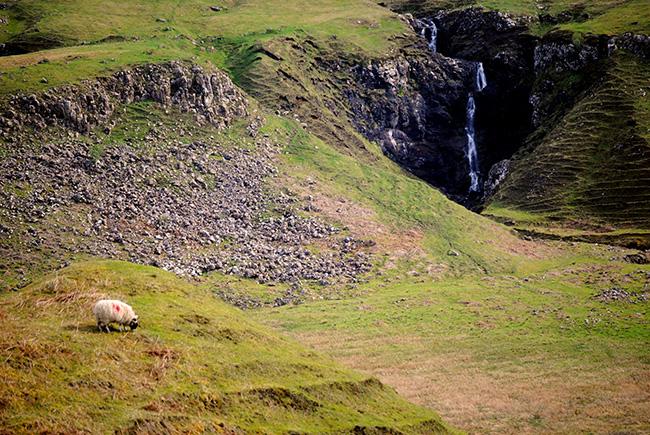 A lo lejos la cascada y, como siempre, una cabra pastando